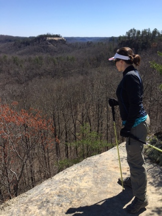 Auxier Ridge Red River Gorge
